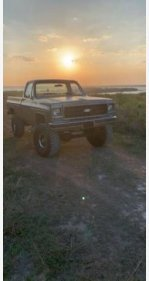 1977 Chevrolet C/K Truck for sale 101175767